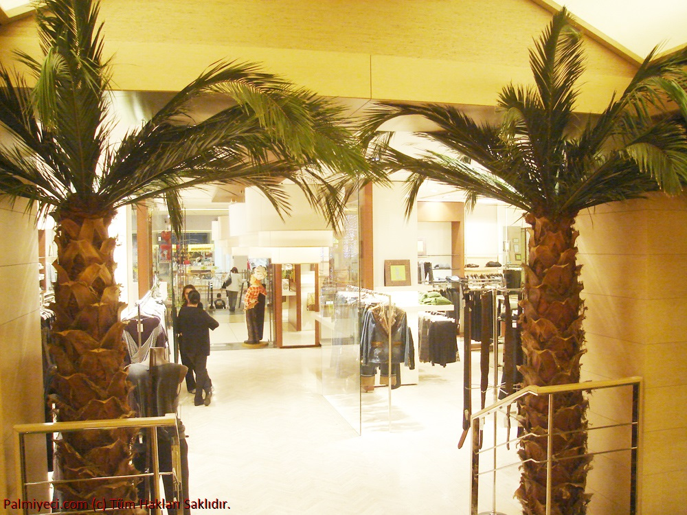Home Store - Interior Palm Work
