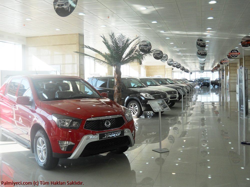 Ssangyong Showroom - Palm interior decoration